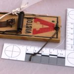 VICTOR mouse trap with softwood base