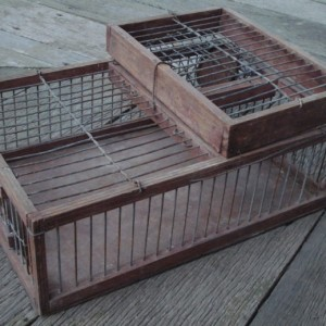 Finch Trap Cage http://www.vintagetraps.co.uk/shop/finch-trap-australian-finch-trap-10102/