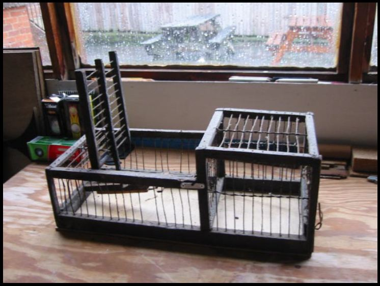 Finch Trap Cage http://www.vintagetraps.co.uk/shop/finch-trap-single-catch-10012/