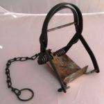 Fenn MK1 Rabbit Trap (7087)