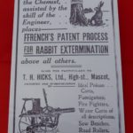 7007 Rabbit Extermination