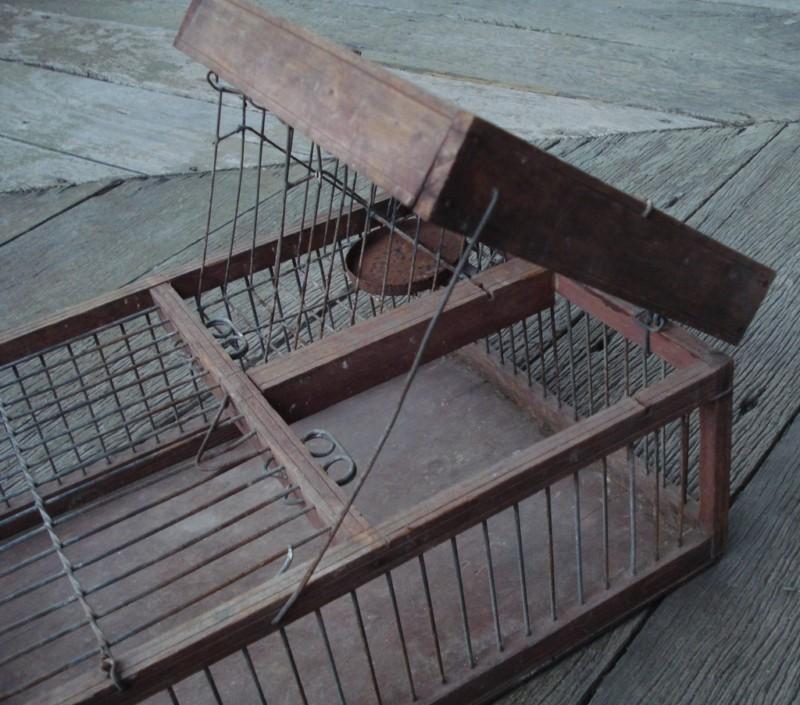 Australian Finch Trap set