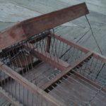 Australian Finch Trap 03