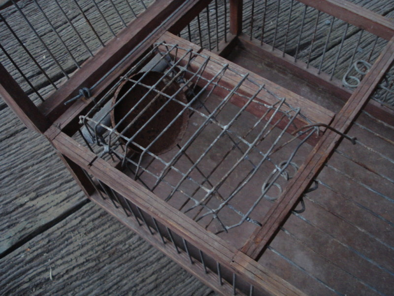 Australian Finch Trap 08