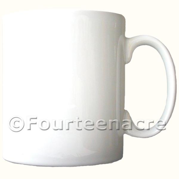 Blank Plain Mug image you choose
