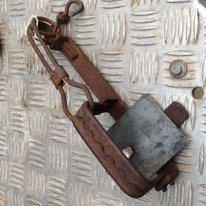 Vintage Traps For SaleVintage Traps
